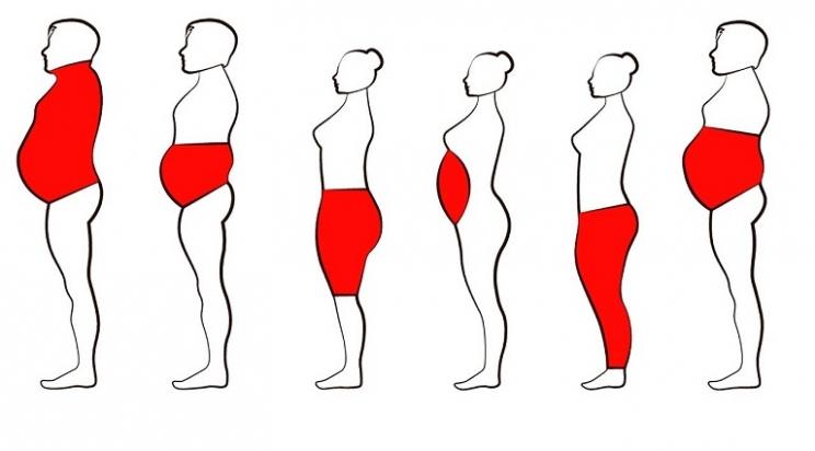 أماكن تتركز فيها الدهون بجسمك